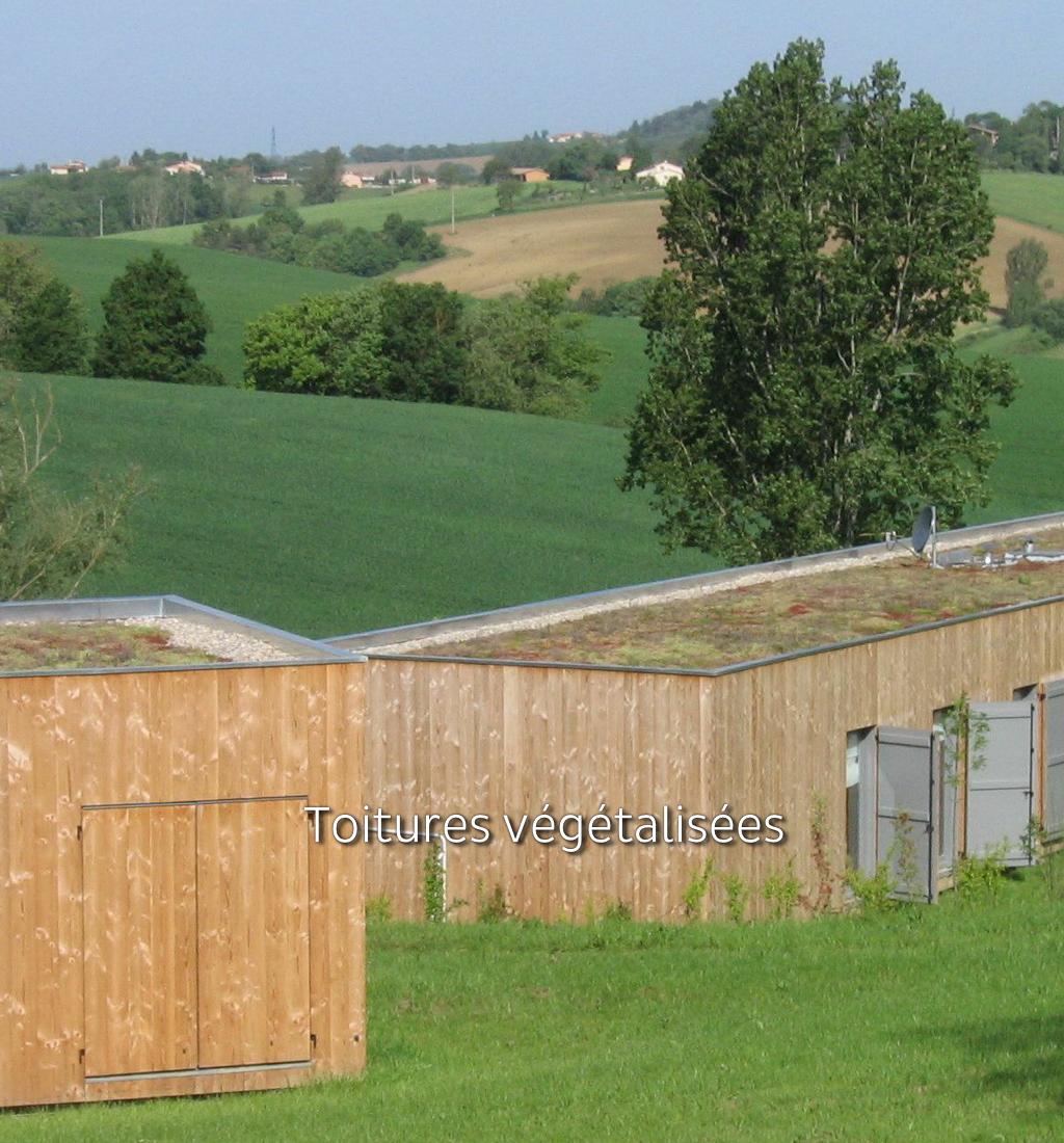 Landscop design - Toitures végétalisées et terrasses jardin